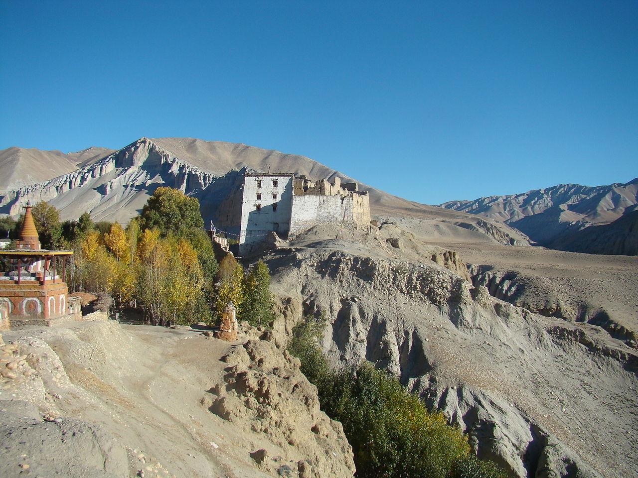 File Charang Mustang Nepal Jpg Wikimedia Commons