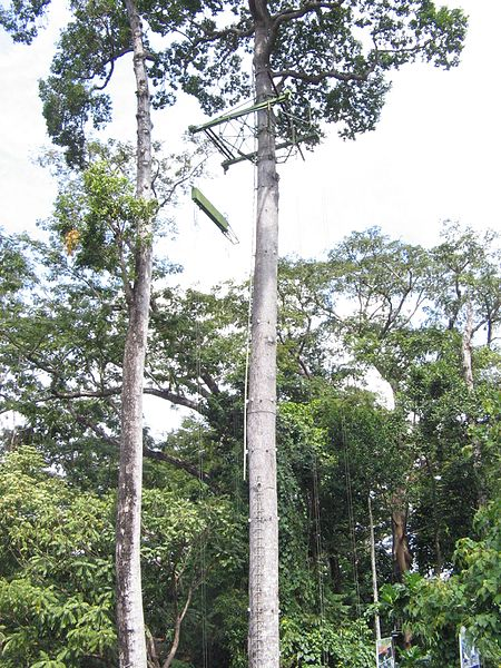 File:Tree Top Adventure - Baguio itinerary