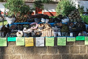 Street vendor selling herbal remedies in Patzc...
