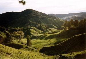 A view of Titiwangsa Mountains taken from a te...