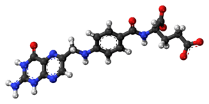 Ball-and-stick model of the folic acid molecul...