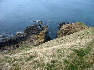 Siccar Point Taken from cliff top looking Nort...
