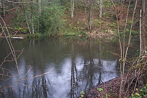 English: Frogs Hole Lane Pond This pond may be...