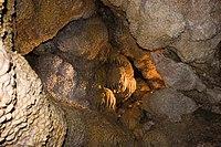 Jewel Cave (269779943). Jpg