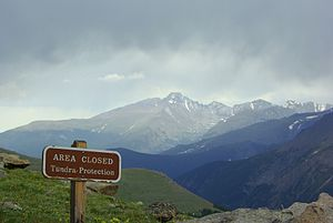 Tundra in Rocky Mountain National Park
