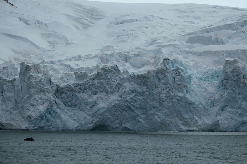 Glacier on Elephant Island (6019623842)