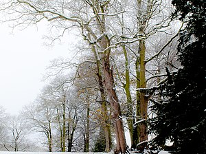 Langton, North Yorkshire. Become a fan on face...