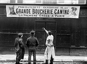 English: Grande Boucherie Canine, Paris, 1910 ...