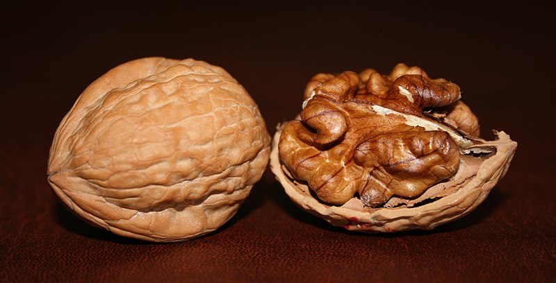 Two English Walnuts.jpg