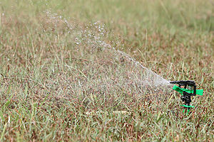 English: An oscillating sprinkler watering a lawn.