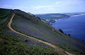 English: Coast path near Hallsands