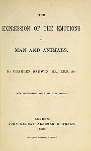Lespressione Delle Emozioni Nelluomo E Negli Animali