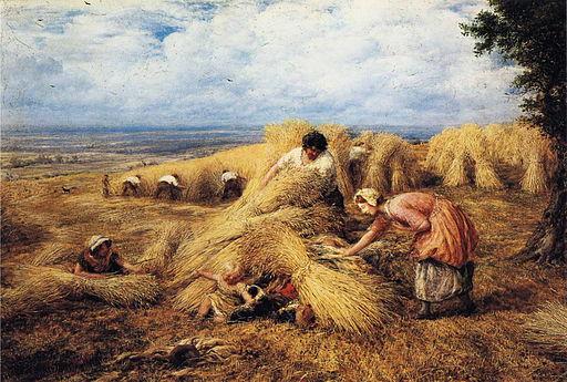 Seek And Farm Hide