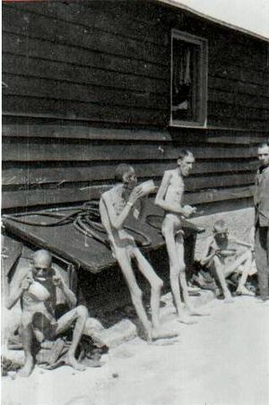 English: Survivors of the Mauthausen-Gusen con...