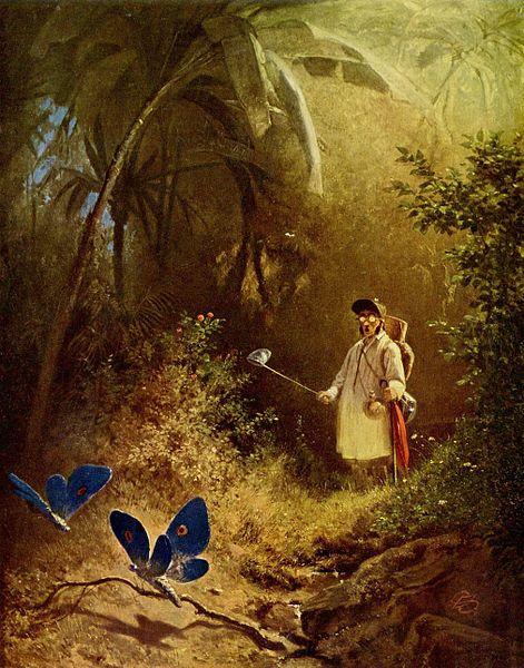 Der Schmetterlingsjäger (von Carl Spitzweg)