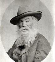 Photo portrait of American poet Walt Whitman. ...