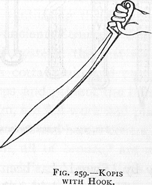 An illustration showing a kopis with a hook-li...