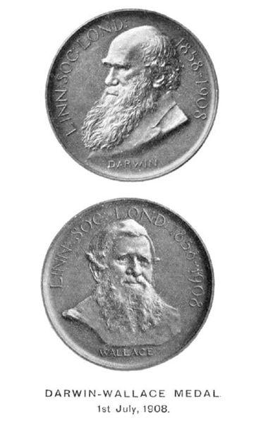File:Darwin-Wallace medal.jpg