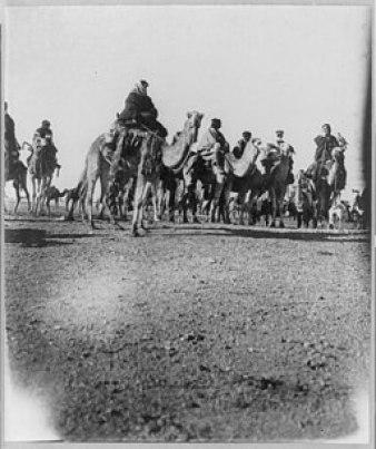 Desert caravan LCCN2001705578