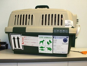 Dogtainers Pet Transport Clipper Cat Cage Plastic Travel Crate Labelled