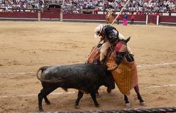 Imagen de un picador en una corrida de toros.