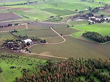 Pemandangan dari atas ladang pertanian diselingi jalan-jalan, sebuah hutan kecil di dekat depan foto