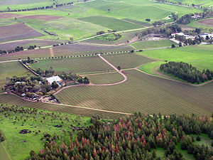 An aerial view of the Barossa Valley in South ...