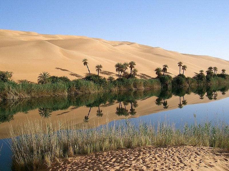 File:Oasis in Libya.jpg