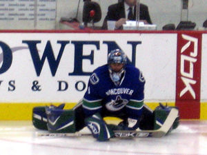Roberto Luongo, goaltender for the Vancouver C...