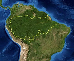 This is a map location of the Amazon Basin. Th...