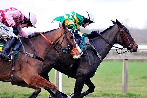 By Paul (AP McCoy & Jason Maguire) [CC BY 2.0 (https://creativecommons.org/licenses/by/2.0)], via Wikimedia Commons