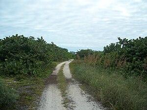 : Path