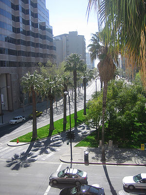 Palm trees lining streets in San Jose, California