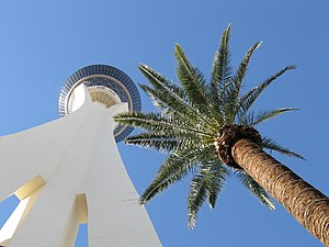 Two Towers Las Vegas
