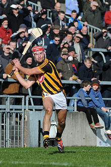 List of sports   Wikipedia Cillian Buckley in action for Kilkenny against Galway in a hurling league  game