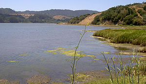 English: north end of Bolinas Lagoon, looking ...