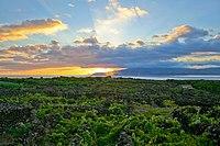 Landscape of the Pico Island Vineyard Culture.jpg