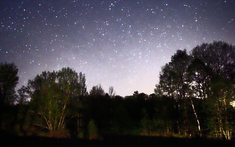 File:Night Sky Stars Trees 01.jpg