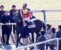 El Condor Pasa 19991128I1.jpg