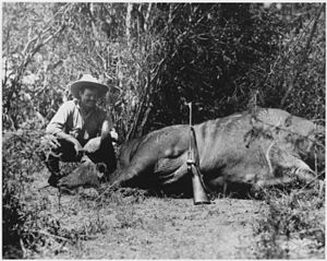 Ernest Hemingway on Safari in Africa - NARA - ...