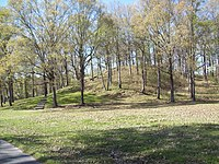 Mound A at Poverty Point.jpg