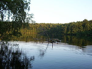 The Pinnsee lake near Mölln in Schleswig-Holst...