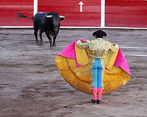 Bullfight at San Marcos Fair, Aguascalientes, ...
