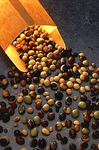 Variedades da soja são usadas para diferentes propósitos.