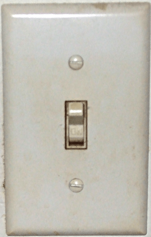 A picture of a Toggle light switch.