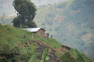 House and people in the Rwenzori Mountains, Ka...