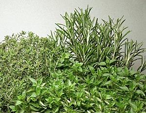 Herbs: Thyme, oregano and rosemary