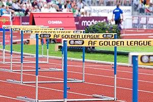110 metre hurdles Bislett Games 2008