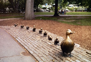 Make Way for Ducklings in the Boston Public Ga...