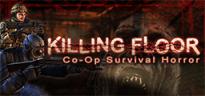 Killing Floor (2009 video game)